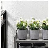 ФЕЙКА Искусственное растение в горшке, д/дома/улицы, космея белый, фото 2