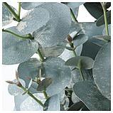 ФЕЙКА Искусственное растение в горшке, д/дома/улицы эвкалипт, фото 4
