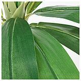 ФЕЙКА Искусственное растение в горшке, д/дома/улицы пальма, фото 2