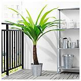ФЕЙКА Искусственное растение в горшке, д/дома/улицы пальма, фото 3