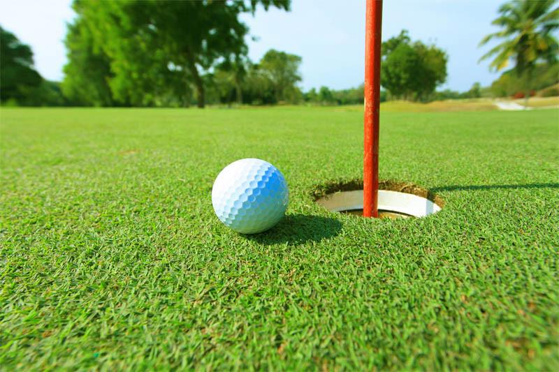 Газон для гольфа 22мм