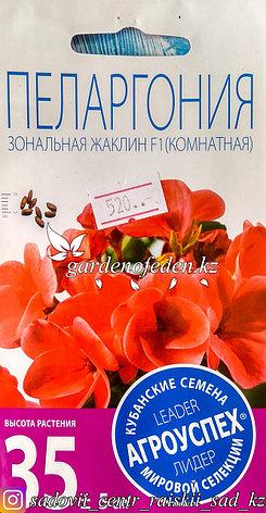 """Семена пакетированные Агроуспех. Пеларгония """"Зональная Жаклин F1"""", фото 2"""