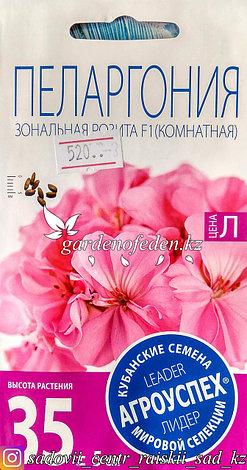 """Семена пакетированные Агроуспех. Пеларгония """"Зональная Розита F1"""", фото 2"""