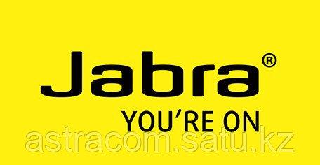 Jabra Мировой лидер в производстве гарнитур