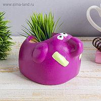 """Растущая трава керамика """"Слонёнок"""" 7,5х10х8,2 см"""