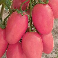 Семена томат Новичок розовый 50 гр