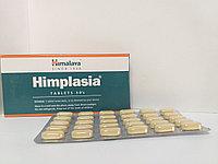 Химплазия (Himplsia Himalaya)