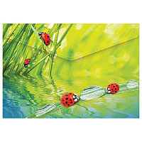 "Папка на кнопке А4 Berlingo ""Ladybird"" 180мкм # AKk_04032"