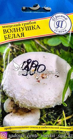 """Семена пакетированные Престиж. Мицелий грибов """"Волнушка белая"""", фото 2"""