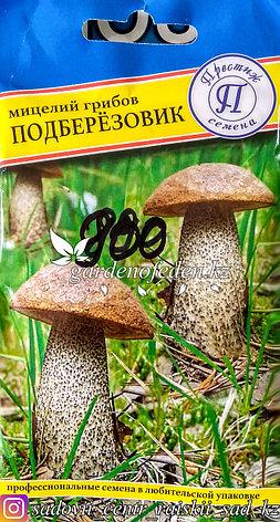 """Семена пакетированные Престиж. Мицелий грибов """"Подберезовик"""", фото 2"""