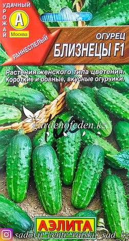 """Семена пакетированные Аэлита. Огурец """"Близнецы F1"""", фото 2"""