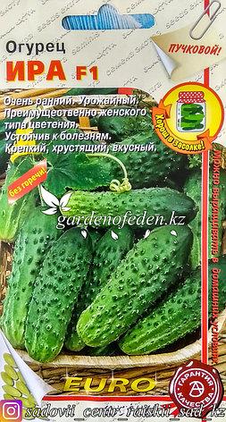 """Семена пакетированные Euro Extra. Огурец """"Ира F1"""", фото 2"""