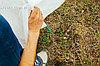 """Парник """"Весна"""" средний. Длина 5м. Высота 1.2м. 6 дуг из металла. Укрывной материал 60 г/м2. , фото 2"""