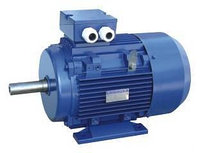 Электродвигатель АИР 112 М2  7,5кВт 3000об/мин 2081(лапы+фланец)