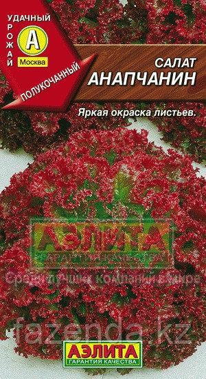 Салат Анапчанин 0,5гр