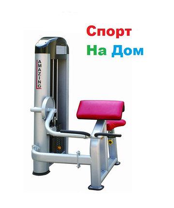 """Силовой блочный тренажер """"бицепс-машина"""" Amazing AMA-307, фото 2"""