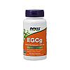 Экстракт зеленого чая Now Foods - EGCg, 400 мг , 90 капсул