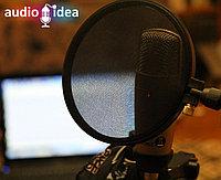 Запись аудио-рекламы на двух языках
