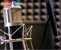 Запись аудио-рекламы