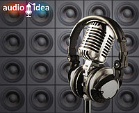 Запись рекламной песни на двух языках
