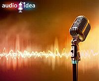 Запись рекламной песни