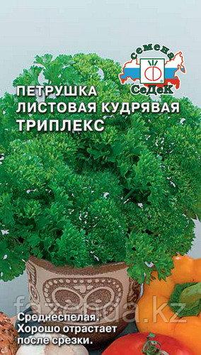 Петрушка листовая Триплекс 500шт/2гр  100