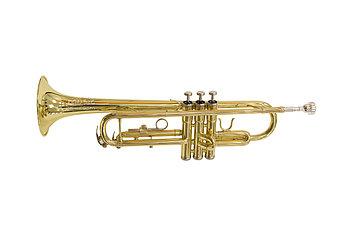 Труба Rowell