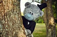 Мишка Тедди на день рождение в Павлодаре, фото 1