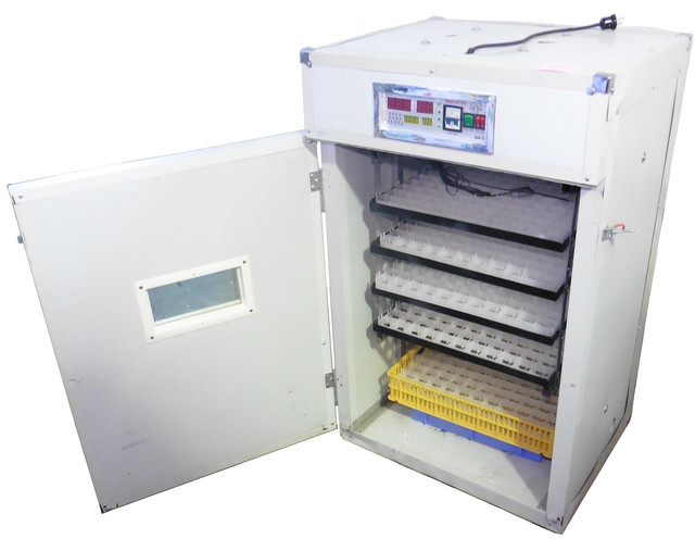 """Промышленный инкубатор """"HHD 352"""" — достаточно вместительная модель, подходящая для разведения самых разных птиц: от перепелок до страусов"""