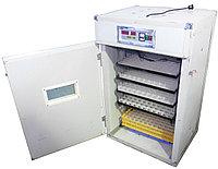 Промышленный инкубатор на 352 яйца
