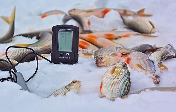 Эхолот Практик ЭР-6Pro2 — залог богатого улова в зимнее время года