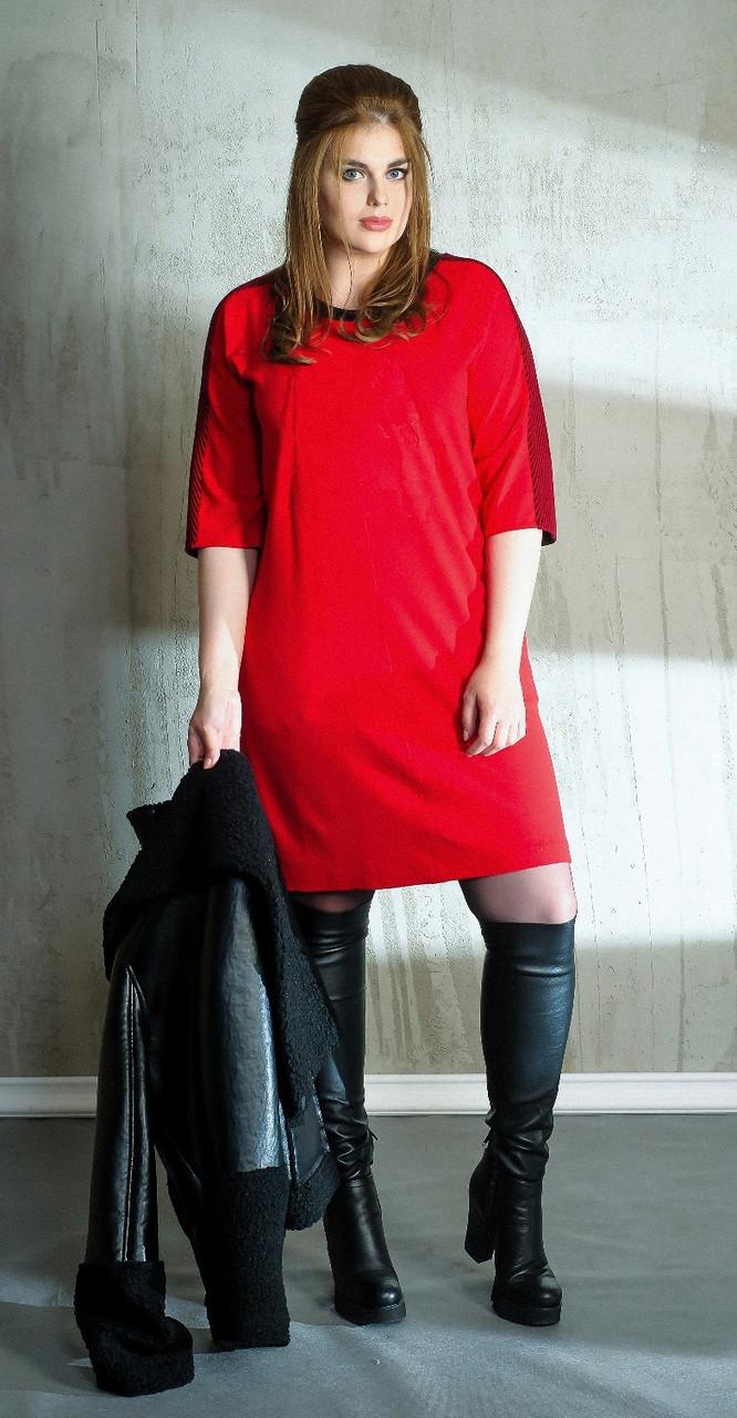 Платье Anna Majewska-1051.1, оттенки красного, 50