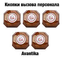 Беспроводная кнопка вызова YK500-1K-B avantika, фото 1