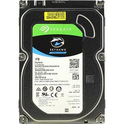 Внутренний  жесткий диск HDD 10000Gb SkyHawk Seagate