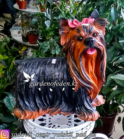 """Садовая фигура """"Собака йорк"""", высота: 33см. Материал: Полистоун., фото 2"""