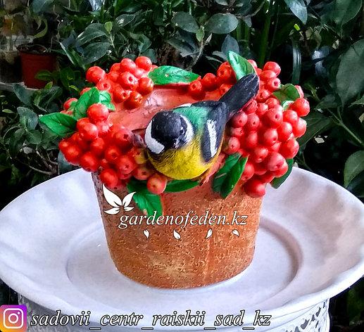 """Садовая фигура """"Попугай на ведерке с ягодами"""", высота: см. Материал: Полистоун., фото 2"""