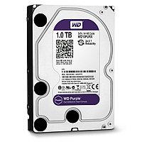 Жесткий диск Western Digital HDD 1000GB, фото 1