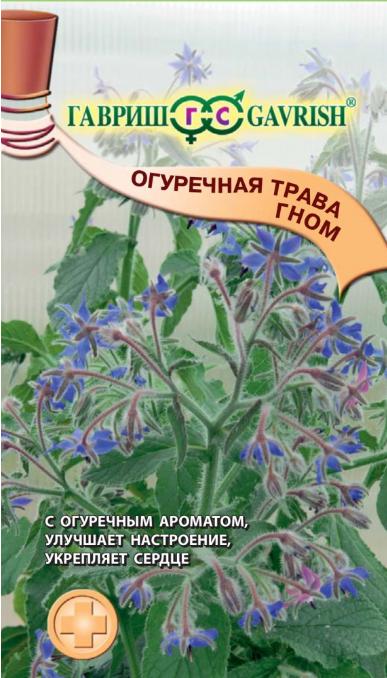 Семена. Огуречная трава (бораго) «Гном», 0,5 г