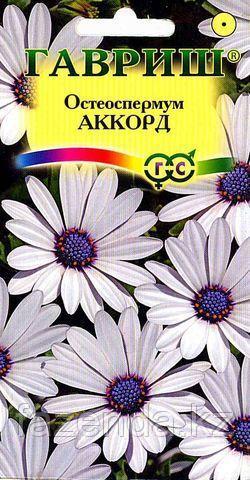 Остеоспермум Аккорд 0,1-0,2г