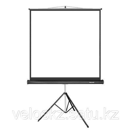 Экран 203-154 на штативе белый Delux DLS-T203x154W