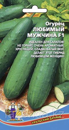 Огурец Любимый Мужчина 10-12шт/0,3гр