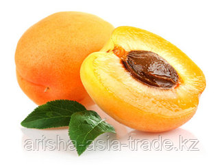 Саженцы абрикос Майский Казахстан