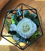 Флорариум из стабилизированных роз и растений