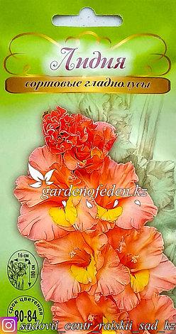 """Семена пакетированные Алькор. Гладиолус сортовой """"Лидия"""", фото 2"""