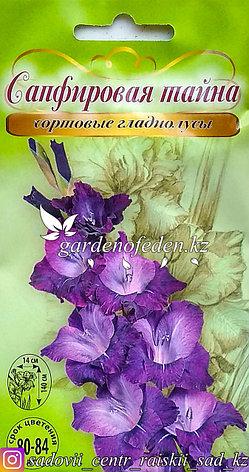 """Семена пакетированные Алькор. Гладиолус сортовой """"Сапфировая тайна"""", фото 2"""
