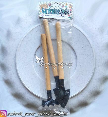 Набор малых, садовых, инструментов. Материал наконечника: Сталь. Черенок: Дерево., фото 2