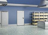 Двери технологические одностворчатые, фото 2