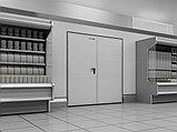 Двери технологические двухстворчатые, фото 3