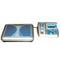 Весы ВМЭН-200-50/100-Д2-А с питанием от сети переменного тока и выносным пультом управления