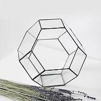 Флорариум из шестигранников и квадратов.